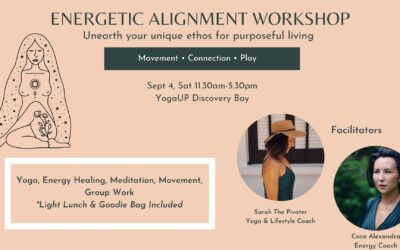 Energetic Alignment Workshop